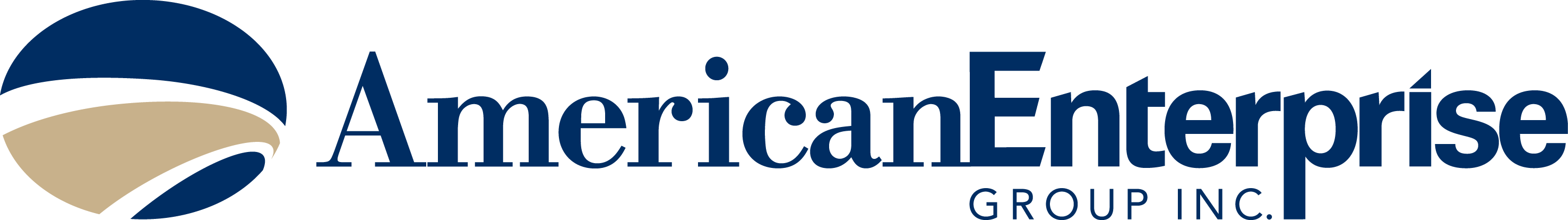 American Enterprise Group logo